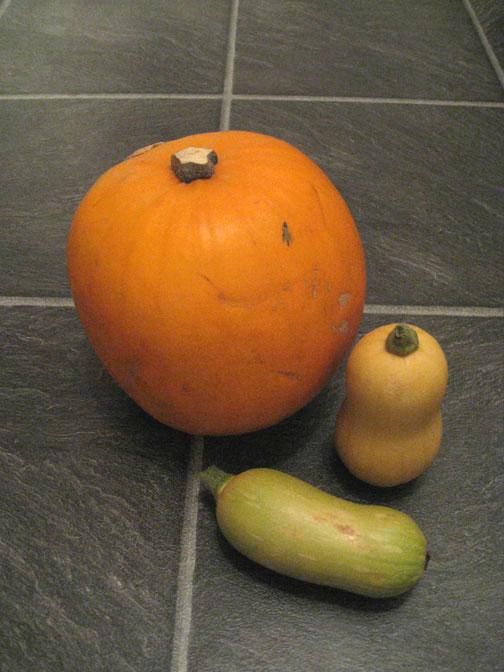 Three squash