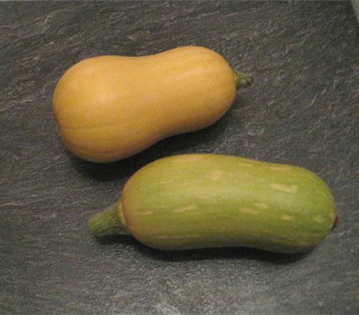 Two squash