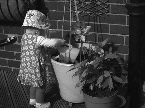 Bean watering