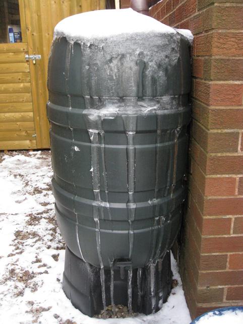 Frozen butt
